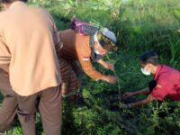 Kawasan Wisata Agro Leneng Di Hijaukan, Puluhan Siswa dan komunitas pencinta lingkungan Tanam Pohon